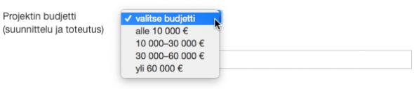 projektin-budjetti-595